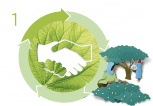 Η Δέσμευση της Garnier για Green Beauty